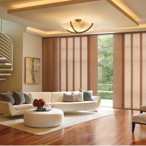 vertical blind in Lucknow